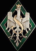 Знак 5-й Сибирской дивизии Польской армии