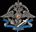 <b>Знак Общества повсеместной помощи пострадавшим на войне солдатам и их семьям II степени</b>