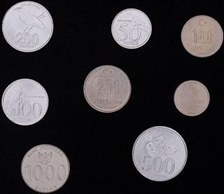 Индонезия. Лот из монет 1999-2010 гг. 8 шт.