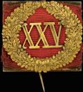 Знак отличия за 25 лет беспорочной службы. На александровской ленте