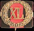 Знак отличия за 40 лет беспорочной службы. На владимирской ленте (для гражданского чиновника)