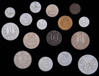 Польша. Лот из монет 1917-1965 гг. 16 шт.