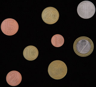Белоруссия. Лот из монет 2009 г. 8 шт.