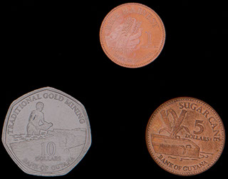 Гайана. Лот из монет 2009-2012 гг. 3 шт.